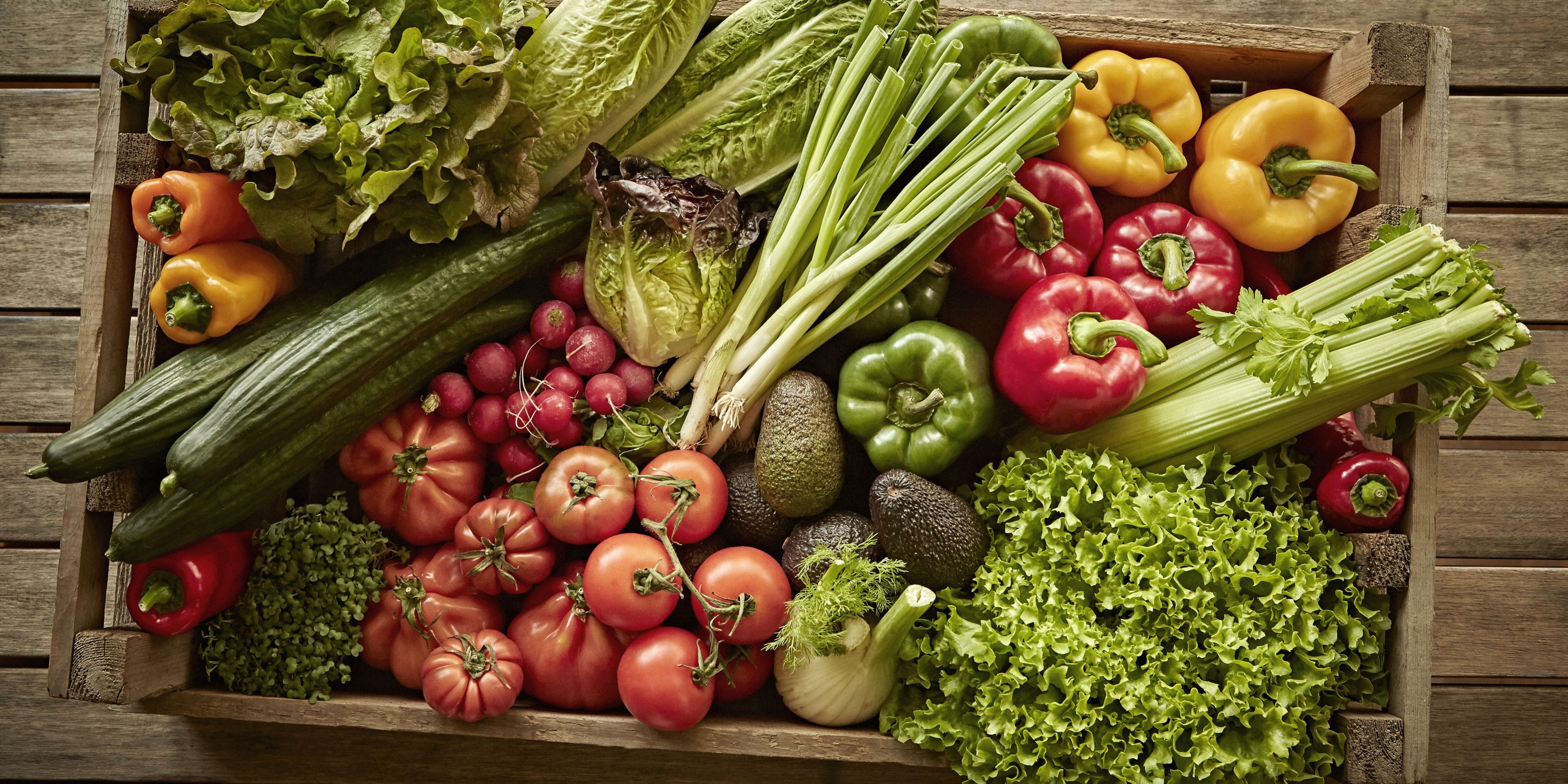 gta food wholesaler